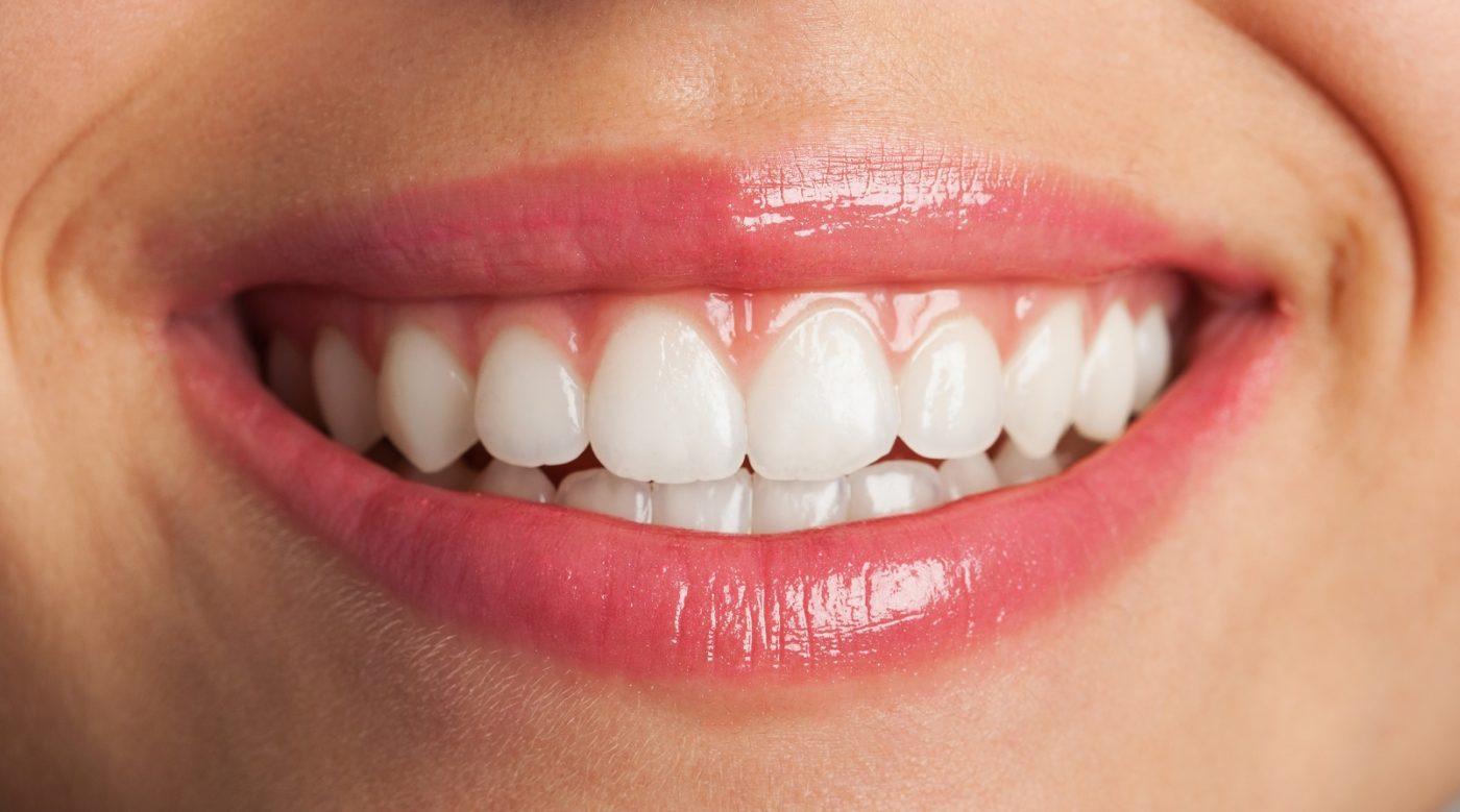 cómo funcionan los dientes odontología